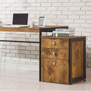 Elodia 3-Drawer Vertical Filing Cabinet by Union Rustic