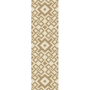 Aura Mocha/Beige Indoor/Outdoor Area Rug