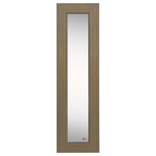 Darby Home Co Panel Accent Mirror