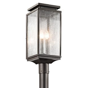Conesville Outdoor 3-Light Lantern Head by Darby Home Co