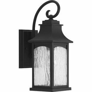 De Witt 1-Light Outdoor Wall Lantern by Darby Home Co
