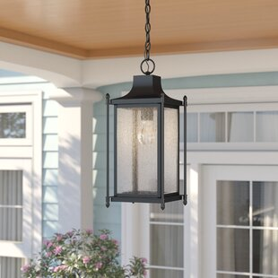 Abbott 1-Light Outdoor Hanging Lantern