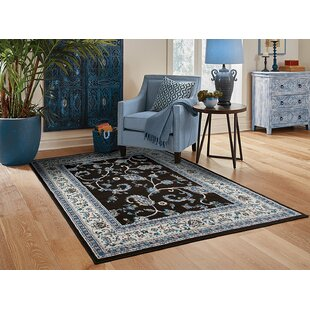 Read Reviews Resendiz Black Indoor/Outdoor Area Rug By Charlton Home