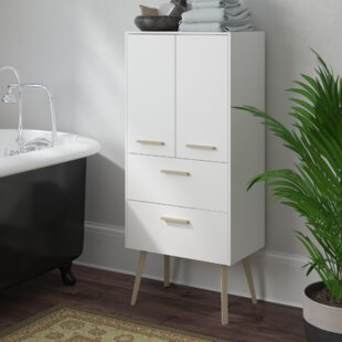 Tompkins 60cm X 117cm Wall Mounted Cabinet By Mikado Living
