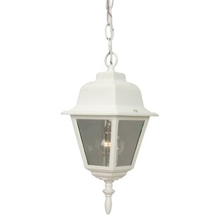 Oakhill 1-Light Four Sides Outdoor Hanging Lantern