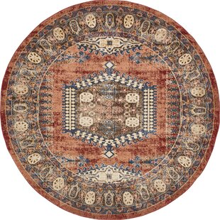 Nathanson Terracotta Area Rug by Astoria Grand