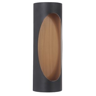 Look for Cruise 2-Light Outdoor Sconce By Brayden Studio