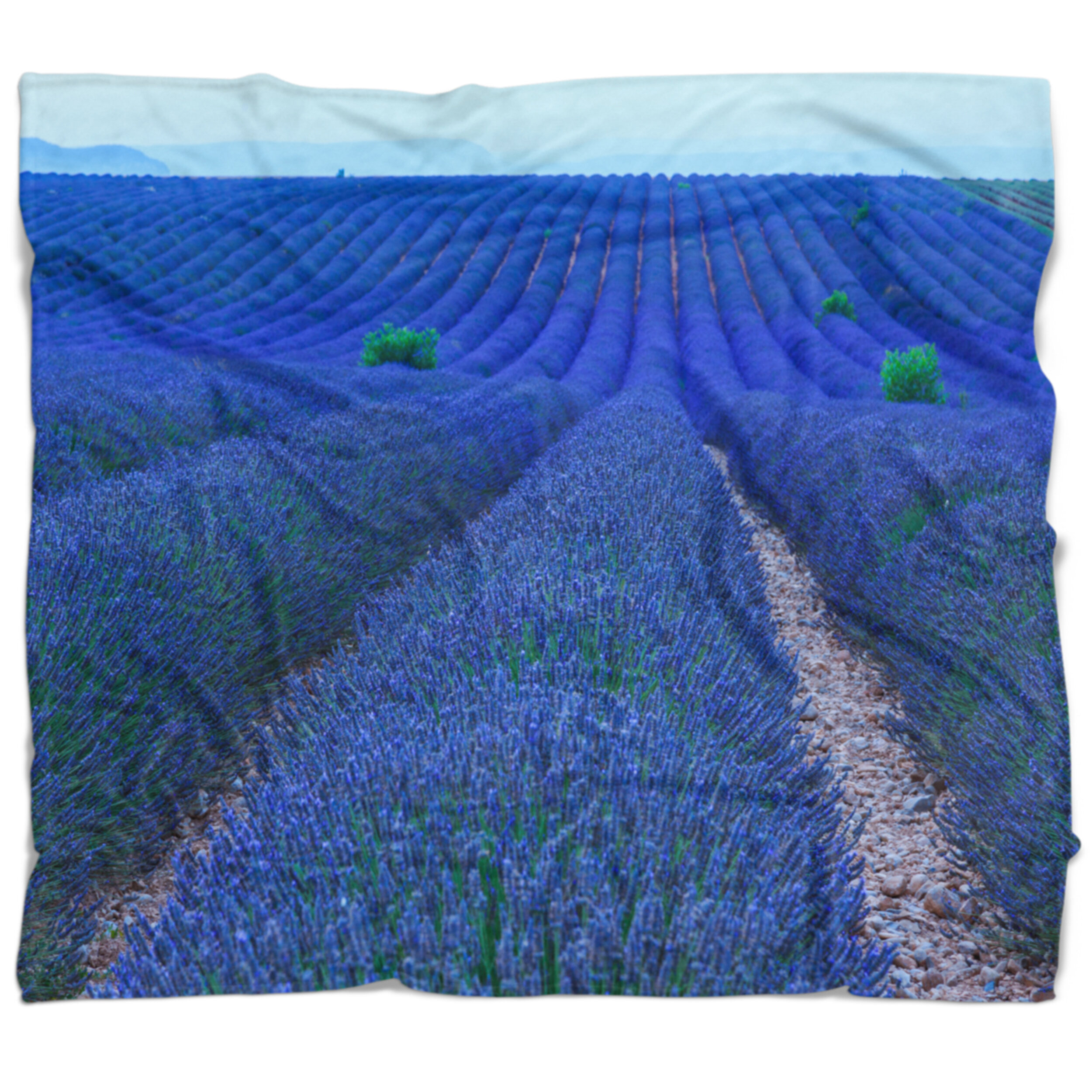 East Urban Home Floral Lavender Field Sunset Near Valensole Blanket Wayfair