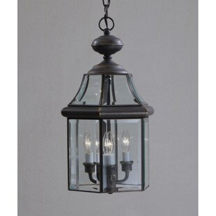Darby Home Co Janette 3-Light Outdoor Hanging Lantern