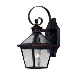 Guide to buy Britton 1-Light Outdoor Wall Lantern By Darby Home Co