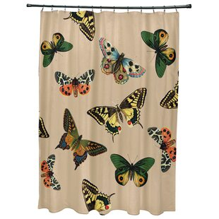 Swan Valley Butterflies Animal Print Single Shower Curtain