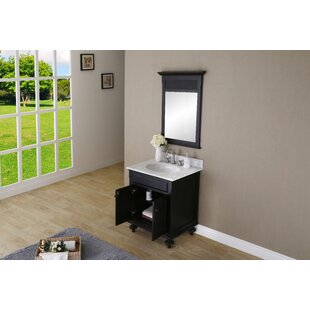Affordable Price Carlson 30 W Single Bathroom Vanity Set with Mirror BydCOR design