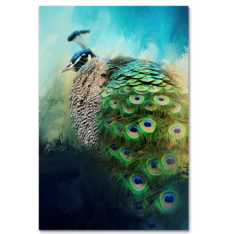 Trademark Art Peacock In Winter Graphic Art Print On Wrapped Canvas Wayfair