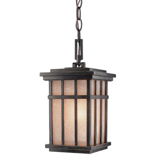 Bloomsbury Market Tenleytown 1-Light Outdoor Hanging Lantern