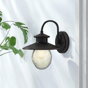 Andover Mills Ziggy 1-Light Outdoor Barn Light