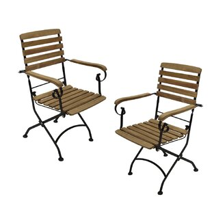 Peashrub Folding Garden Chair Set (Set Of 2) By Sol 72 Outdoor
