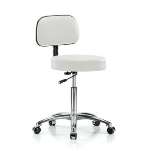 Height Adjustable Exam Stool with Back
