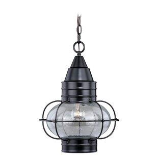 Best Reviews Sanibel 1-Light Outdoor Hanging Lantern By Breakwater Bay