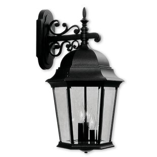 Darby Home Co Busse 1-Light Outdoor Wall Lantern