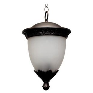 Alcott Hill Phillipstown 1-Light Outdoor Pendant