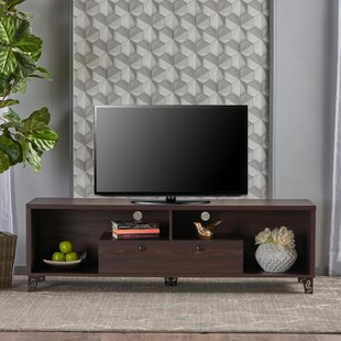 Wrought Studio Roles TV Stand for TVs up to 60