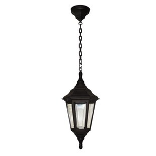 Wetherby 1 Light Outdoor Hanging Lantern By Sol 72 Outdoor