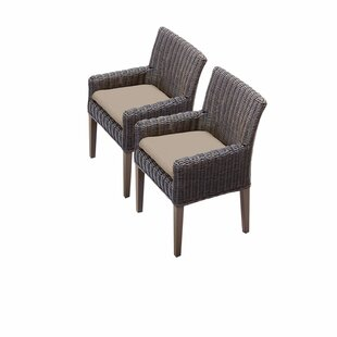 Mejia Patio Dining Chair with Cushion (Set of 2)