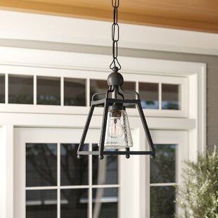 Barnaby 1-Light Outdoor Pendant