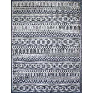 Starr Navy Indoor/Outdoor Area Rug