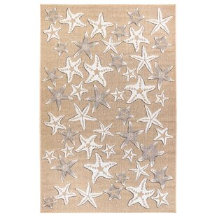 Desantiago Starfish Sand Indoor/Outdoor Area Rug