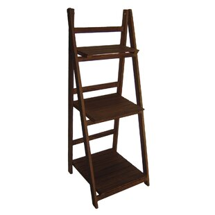 Ladder Bookcase by Cheungs