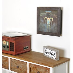 Record Cover Display Frame And Storage Vinyl Wall Mounted by Union Rustic Looking for