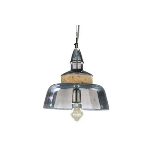 Foreign Affairs Home Decor Spectrum 1-Light Bowl Pendant