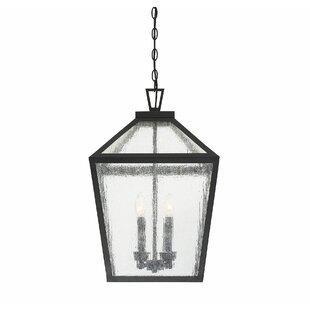 Dunshee 4-Light Outdoor Hanging Lantern by Alcott Hill