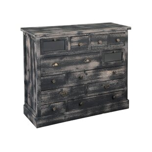 Palacio Weathered 12 Drawer Accent Chest by World Menagerie
