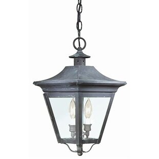 Darby Home Co Theodore 2-Light Outdoor Hanging Lantern