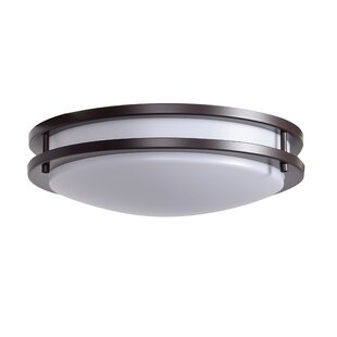 Latitude Run Penning 1-Light Outdoor Flush Mount
