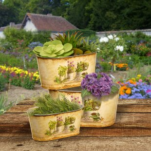 Rustic Tin Flower Pots