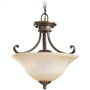 Darby Home Co Culley 2-Light Bowl Pendant