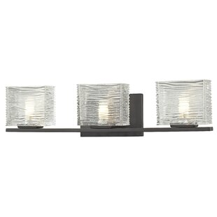 Brayden Studio Seeley 3-Light Vanity Light