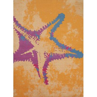 Starfish Wayfair