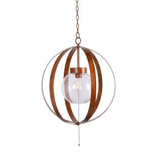 Wrought Studio Baird 1-Light Outdoor Pendant