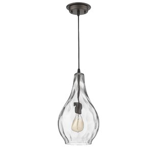 Gracie Oaks Wells Transitional 1-Light Te..