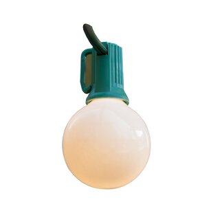25 ft. 25-Light Globe String Light by Wintergreen Lighting