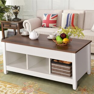 https://secure.img1-fg.wfcdn.com/im/61334057/resize-h310-w310%5Ecompr-r85/6677/66774480/alaska-lift-top-coffee-table-with-storage.jpg