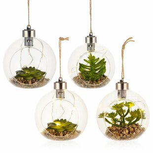 4 Piece 1 Light Outdoor Pendant Set By Symple Stuff