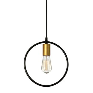 Honey 1-Light Bulb Pendant by Wrought Studio