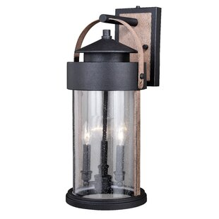 Gracie Oaks Ziegler 3-Light Outdoor Wall Lantern