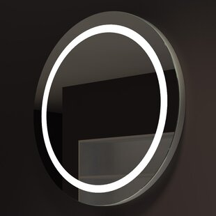 Brayden Studio Ehrhart Illuminated Bathroom/..