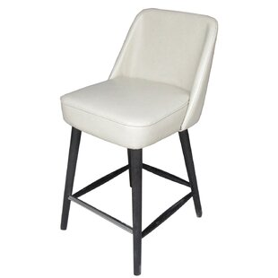 Fendley Counter Bar Stool by Ivy Bronx